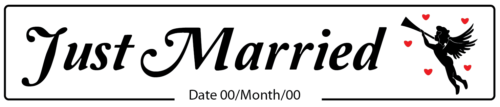Just Married Cupid Wedding Number Plate