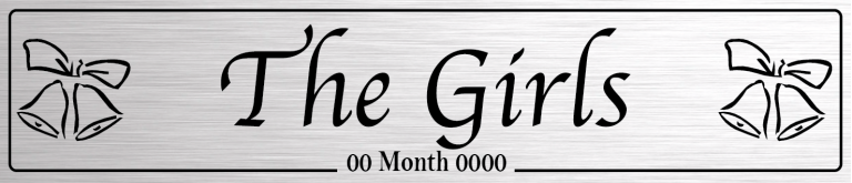 The Girls Silver - Wedding Number Plate